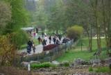 Majówka 2021 w zoo w Poznaniu. 1 maja mieszkańcy odwiedzili zwierzęta