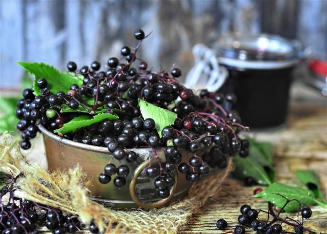 Owoce czarnego bzu są zasobne w dobroczynne substancje, m.in.: witaminę C, witaminy z grupy B i prowitaminę A. Zawierają również flawonoidy, w tym duże ilości rutyny. Jednak nie wolno ich spożywać na surowo! Należy poddać je obróbce termicznej, która całkowicie zlikwiduje glikozyd indukujący cyjanek.