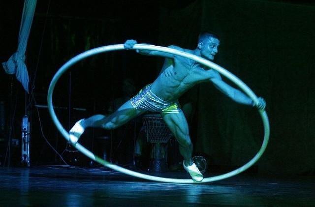 Spektakle Ocelota bazują na akrobatycznych talentach