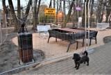 Co powstaje w parku u zbiegu Ogrodowej i Jaskółczej w Zielonej Górze? To zwycięski projekt budżetu obywatelskiego