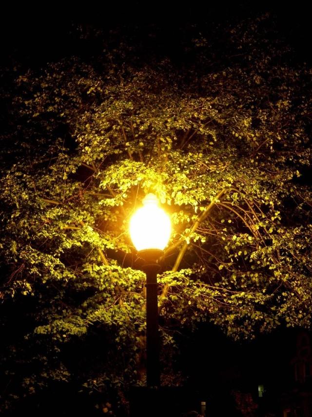 Lampy uliczne w Olsztynie będą zasilane prądem z Gdańska.