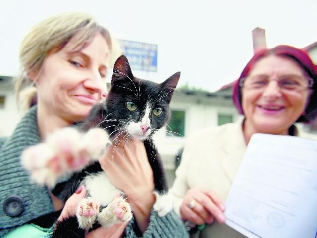Iwona Krzysztofek ma dwie wysterylizowane kotki. W tle Anna Ragiel, prezes TOnZ