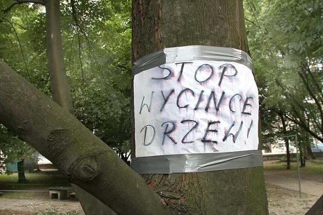 Spółdzielnia przed sądem za wycinkę drzew