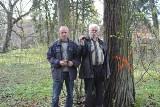 Gmina Zblewo: Wycinka drzew w sąsiedztwie Arboretum Wirty