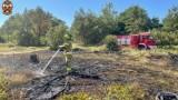 Pożar traw w Ostrowinie. Interweniowała straż!