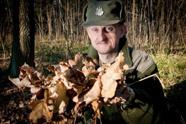 Krzysztof Roszkiewicz z Leśnictwa Biały Kamień (Nadleśnictwo Wałbrzych) pokazuje wysuszony las, w którym w każdej chwili może dojść do pożaru