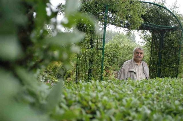 Prezes Zdzisław Lubaś mówi, że będą bronić swoich ogródków do skutku