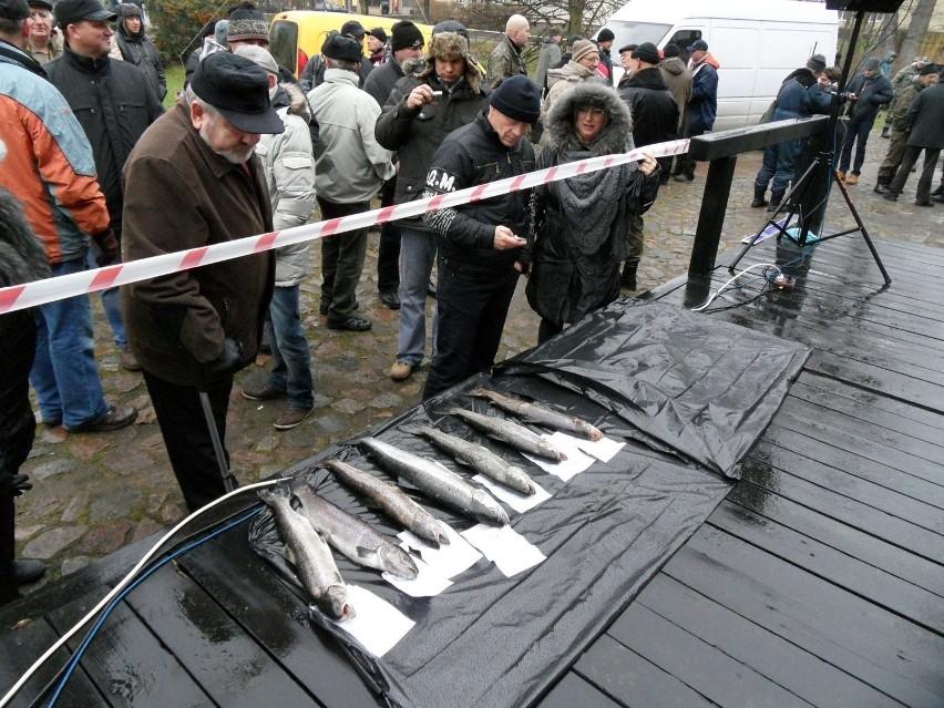 Sezon na trocie nad Słupią. Czas na ryby