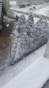 W kalendarzu maj, a za oknem śnieg. Chwilowe, ale intensywne opady śniegu w Bytowie [ZDJĘCIA]