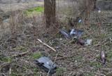 Śmieci nad rzeką w Lublińcu. Chodzi o teren w samym centrum miasta za stacją BP. To Wody Polskie powinny je sprzątnąć? ZDJĘCIA
