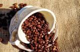 Kawa czy herbata? Który napój jest lepszy dla naszego organizmu?