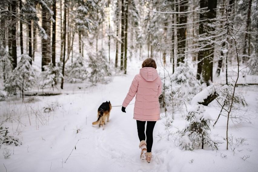 Czy mogę wyjść na spacer z psem?Tak. Ale dla uniknięcia...