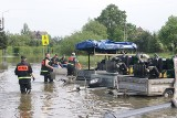 We wsi Turze powódź zabrała wszystko. Dziś ziemia oddała z nawiązką