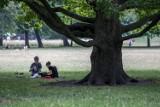 Kraków. Odpoczynek i rekreacja. Tak było dziś w parku Jordana [ZDJĘCIA]