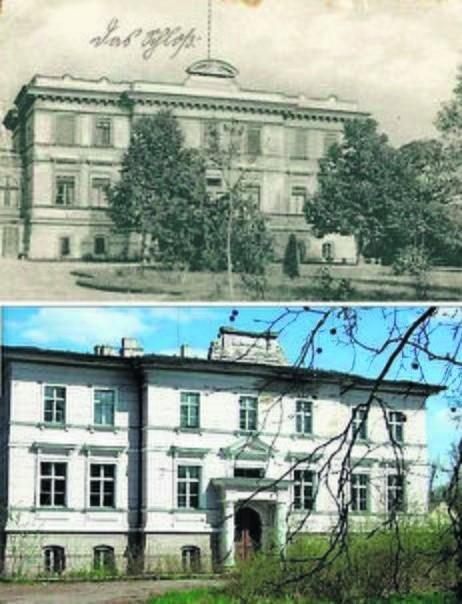 Pałac w Niepruszewie zbudowano w 1890 roku