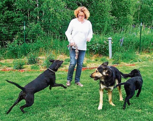 Odkąd dr Makowska wyprowadziła się z Gdańska na wieś, znalazła świetne miejsce nie tylko dla swoich trzech psiaków, ale i dla siebie oraz bliskich