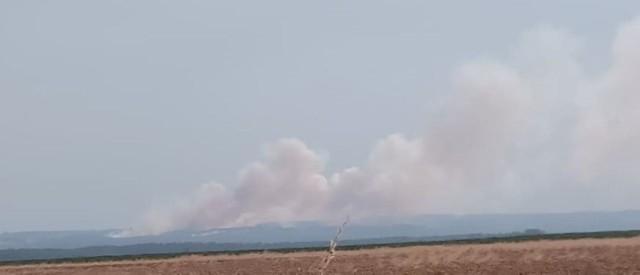 Spaliło się około 30 hektarów ścierniska.