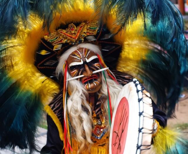 Ayahuasca to napój amazońskich szamanów