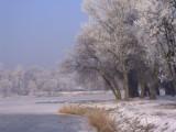 Wielkopolska. Śnieg, śnieżne zamiecie i zimno zostaną z nami do końca tygodnia?
