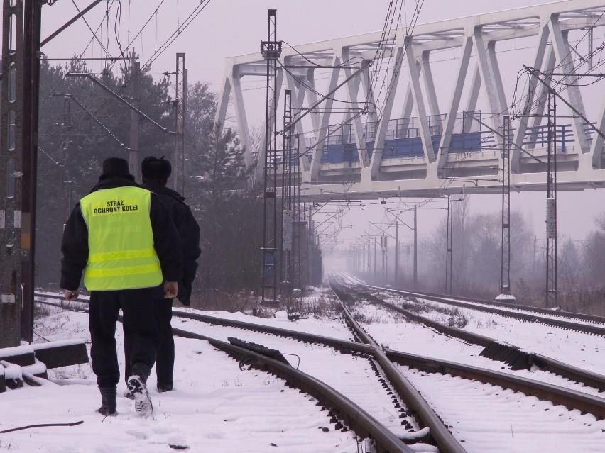 W ostatnich dniach poznańskie patrole Straży Ochrony Kolei zatrzymały dwóch przestępców