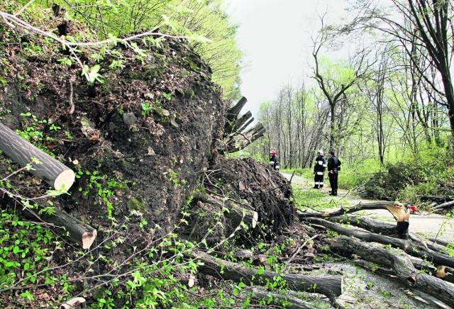 Tak wyglądała droga w Strzeszycach zaraz po osunięciu ziemi