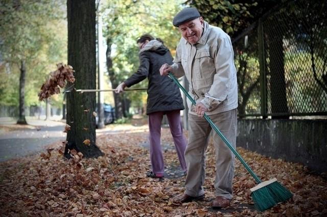 Do miejskiej kompostowni można oddać jednorazowo do pięciu worków liści po 120 litrów każdy