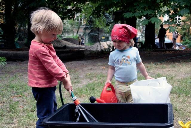 Zdjęcie ilustracyjne/W gminie Brzozie można starać się o dofinansowanie na łapanie deszczówki