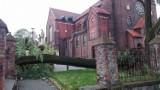 Orkan Ksawery w Siemianowicach Śląskich: Powalone drzewa, uszkodzone samochody i dachy