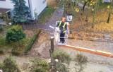 LESZNO. Trwa wycinka drzew na ulicy Niemieckiej oraz budowa parkingu. Sprawdźcie, jak postępują prace  [ZDJĘCIA]