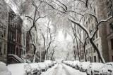 Pogoda na święta będzie wiosenna. Białe święta? Zapomnij! Najnowsza prognoza pogody na Boże Narodzenie zapowiada ciepło