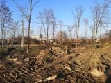 Poznaliśmy wyniki konsultacji społecznych dot. zagospodarowania Parku Południowego w Oleśnicy