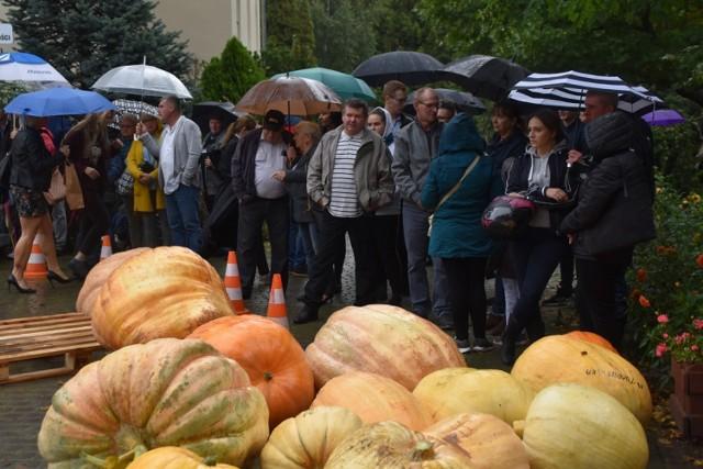 Dzień Korbola 2019: kulminacją imprezy w Grzybnie było ważenie dyń gigantek