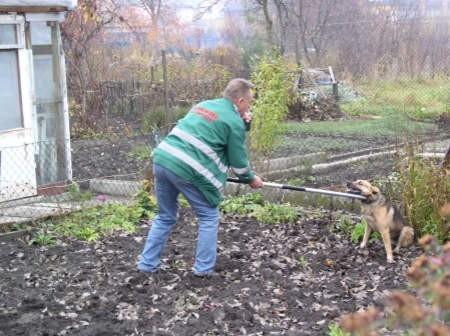 Ryszard Olkowski, hycel z chojnickiego schroniska Przytulisko, przed złapaniem zwierzęcia stara się ustalić czy w pobliżu znajduje się jego właściciel.