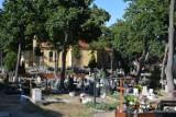 Żagański cmentarz Na górce  to miejsce mocy, w którym zyskuje się spokój i równowagę! To czakra ziemi!