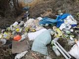 11 maja - Dzień bez śmiecenia. Dzikie wysypiska śmieci to prawdziwa plaga w powiecie pleszewskim. Toniemy w śmieciach