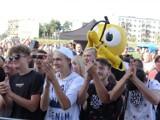 Święto Miodu 2021 w Gomunicach. Słodkości, pszczelarze, koncerty i tłum na stadionie ZDJĘCIA, FILM