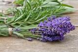 Jak zadbać o ładny zapach w domu? 12 sposobów, aby w mieszkaniu pięknie pachniało