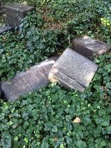 Zabytkowy cmentarz żydowski w Zabrzu zdewastowany - zobacz te zdjęcia! Wandale przewrócili ponad 20 nagrobków. Szuka policja