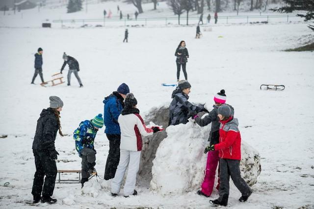Nie szkodzi, że spod śniegu wystają bryły ziemi, nie szkodzi, że śnieg się topi. Tak go niewiele było w ostatnich latach, że mieszkańcy Bydgoszczy tłumnie wyszli na sanki