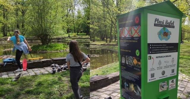 Ptasi bufet w Parku Kościuszki w Katowicach.  Zobacz kolejne zdjęcia. Przesuwaj zdjęcia w prawo - naciśnij strzałkę lub przycisk NASTĘPNE