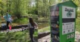 W Parku Kościuszki w Katowicach pojawił się ptasi bufet. Robi furorę. Szczególnie zainteresowani są najmłodsi mieszkańcy miasta