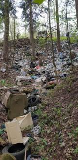 """Dwie tony śmieci w lesie w Sowinie. """"Czegoś takiego dawno nie widzieliśmy"""" [ZDJĘCIA]"""