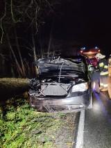 Wypadek pod Mieściskiem. Samochód uderzył w jelenia. Jak zachować się gdy uderzymy w dzikie zwierzę?