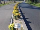 Światowy Dzień Roweru. Rowerem przez Świecie i okolice