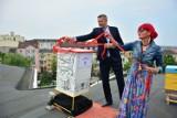 Pierwszy miejski ul w Kielcach. Pszczoły mają dom na dachu Kieleckiego Centrum Kultury [WIDEO, ZDJĘCIA]