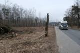 W Dąbrowie Górniczej wycięto ponad 5 tysięcy drzew! Będzie tam przebiegać S1