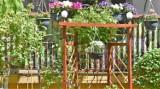 Kwiatowe oazy przy blokach, na chełmskich osiedlach, cieszą oczy. Zobacz zdjęcia