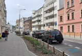 Poznań zwalnia miejsca parkingowe na ulicach, by sadzić drzewa i krzewy
