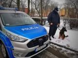 Policyjnym psom służbowym żadna pogoda nie straszna [zdjęcia]