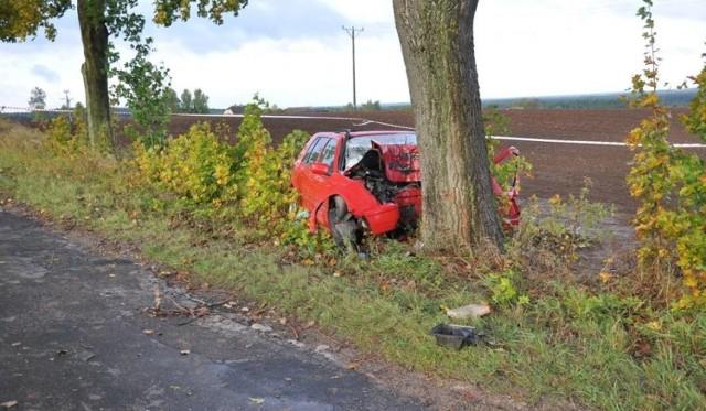 W miejscowości Klamry pijana 41-latka uderzyła w drzewo. Zdjęcie ilustracyjne.